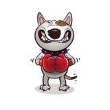 BullTerrier irritado dos desenhos animados Fotos de Stock Royalty Free