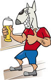 Bullterrier man with glass of beer Stock Images