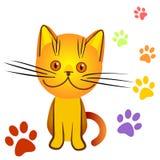 Bully anaranjado del gatito Fotografía de archivo