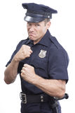 Bully cop on white background Stock Photography