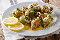 Bulots Cuits - lagade mat vinkade valthornssnäckor med en sås av smör, garli Royaltyfria Foton