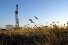 Bulrush. China oilfield drilling rig beautiful Stock Photography