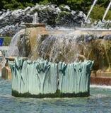 Bulrush in Buckingham Fountain Stock Photography
