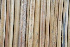 Bulrush fence Royalty Free Stock Photography