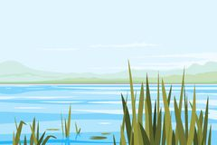 Bulrush Plants River Landscape Royalty Free Stock Photo