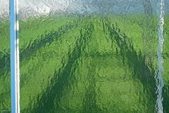 Bultat exponeringsglas i växthusgavel arkivbilder