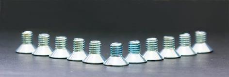 Bulten förhäxer plant Head skruvrostfritt stål för håligheten Arkivbilder
