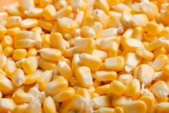 Bulto de granos amarillos del maíz imagenes de archivo