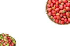 Bulto del tomate de maduración fotografía de archivo libre de regalías
