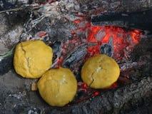 Bulz ost på brand stock video