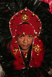 Bumba meu boi festival carnival brazil Stock Photo