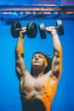Bumbbell training male. Sexy body man indoor Stock Image
