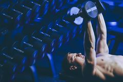 Bumbbell training male. Sexy body man indoor Royalty Free Stock Images