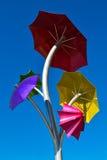 Bumbershoot Sprouted - Jennifer Corio & Dave Frei Imagem de Stock Royalty Free
