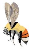 Bumble-bee στο φτερό Στοκ φωτογραφία με δικαίωμα ελεύθερης χρήσης