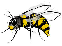 Bumble bee. Illustration Stock Images