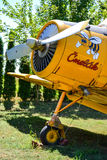 Bumble-bee agro aircraft with bumble-bee painted on engine cover Stock Photography