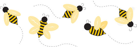 Bumble Bees Stock Image