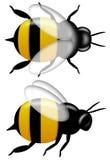 Bumble la parte superiore dell'ape e la vista laterale isolate su bianco royalty illustrazione gratis