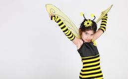 Bumble o traje da abelha Imagem de Stock Royalty Free