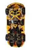 Bumblebee model zdjęcia royalty free