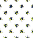 Bumblebee na białym tle banki target2394_1_ kwiatonośnego rzecznego drzew akwareli cewienie Insekt sztuka handwork bezszwowy wzor Zdjęcie Stock