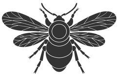 Bumblebee Royalty Free Stock Image