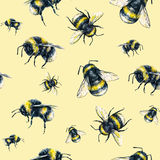 Bumblebee on a yellow background. Watercolor drawing. Insects art. Handwork. Seamless pattern Stock Images