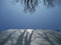 Bäume, die Schatten auf Metallfassade des Gebäudes werfen Stockbild