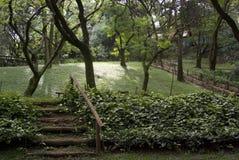 Bäume im szenischen Park Stockbilder