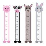 Bumper children meter wall. Animals set Stock Photography