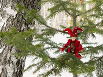 Bumpkin on the twig of a fir-tree in the forest. Royalty Free Stock Photography