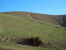Bumpy countryside landscape in Morocco. Bumpy countryside landscape of grassy field with hole in foreground and clear blue sky in warm  and sunny winter day Royalty Free Stock Photos