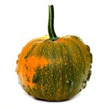 Bumpy pumpkin Stock Images