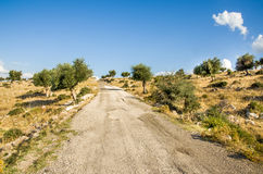 Bumpy road in Puglia countryside -  Gargano Royalty Free Stock Image
