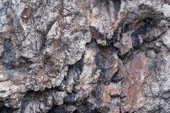 Bumpy stone surface. Abstract texture of a bumpy stone surface closeup Royalty Free Stock Photos