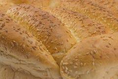 Bun bread background Stock Photography