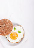 Bun with egg, cottage cheese and fresh basil Royalty Free Stock Photography