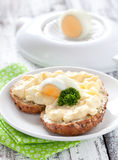 Bun with egg salad Royalty Free Stock Photo