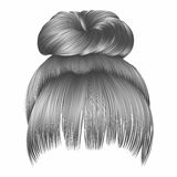 Bun  hairs with fringe gray colors . women fashion beauty style Royalty Free Stock Photos