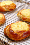 Bun pie with cheese in a bakery Stock Image