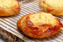 Bun pie with cheese in a bakery Royalty Free Stock Photos