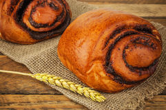 Bun with poppy seed Stock Photography