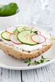 Bun vegetarian. With cucumber and curd Stock Images