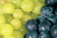 Bunch. Grape Stock Photos