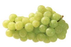 Bunch. Grape stock images