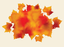 Bunch of abstract watercolor fall leaves Stock Photo