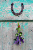 Bunch anise hyssop (Agastache foeniculum) with horseshoe. Bunches of herbs anise hyssop (Agastache foeniculum) and horseshoe hanging on wooden rustic background stock photography