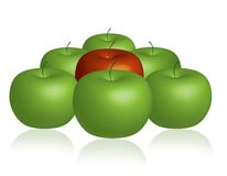 Bunch of Apples. Green and Red Apples Illustration. Additional formats available Stock Photography