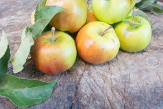 Bunch of apples on a log Stock Photos
